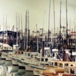 「太平洋ひとりぼっち」50年後の回想