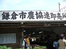 745690ef15fd897097c6ee19dbe08a6a.jpg 鎌倉の直売所
