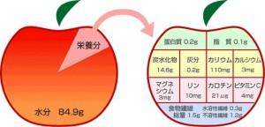 rin 1-1.jpg 腸内美人1-1