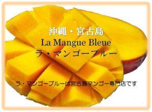mango cut ラ・マンゴーブルー