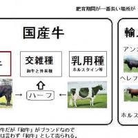 キャプチャ 国産牛