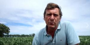 アルゼンチンの大豆畑