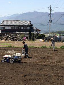 圃場の土壌検査