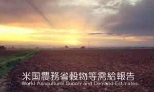 米国穀物需給レポート