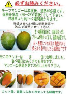 キーツマンゴーの食べ方