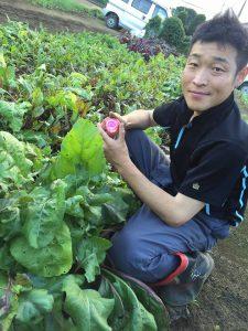 ヨロ研の野菜つくり