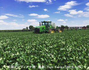 インディアナ州の大豆