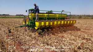 ブラジルの大豆