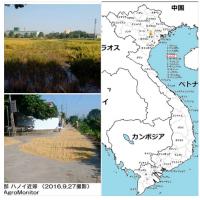 ベトナムの農業