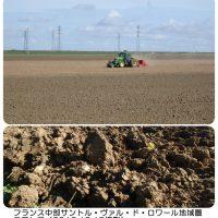 仏の冬小麦播種予定地