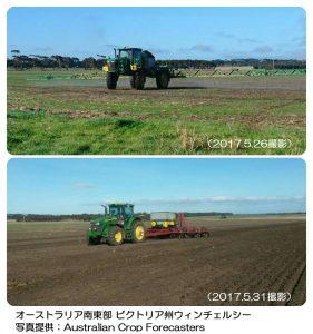 豪州の小麦の播種作業.