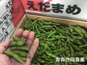 本毛豆(ほんけまめ).
