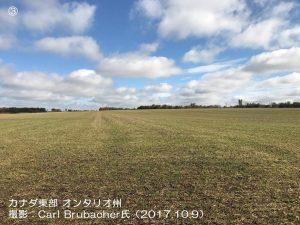 北半球の冬小麦の播種1-3