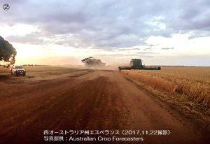 小麦の収穫が雨で遅延(豪州)1-2