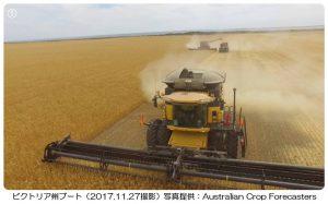 小麦の収穫が雨で遅延(豪州)1-1