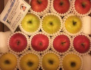 JA相馬村のりんご4種セット.j